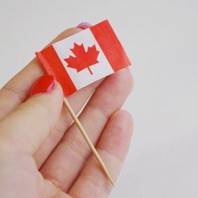 画像1: 〒 ケーキピック/カナダ国旗(6本入)