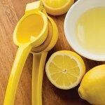画像4: レモンスクイーザー(絞り機) (4)