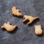 画像4: 〒 クッキー型★ミニ(FoxRun)ハロウィン9個セット箱 (4)