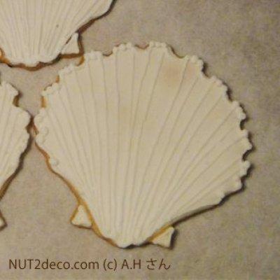 画像1: 〒 クッキー型/貝殻