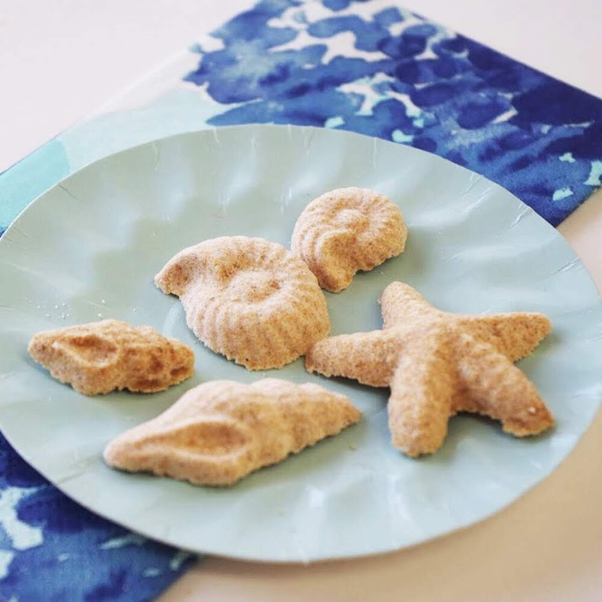 夏に人気の海アイテム。巻貝、ヒトデ、ホタテ貝…