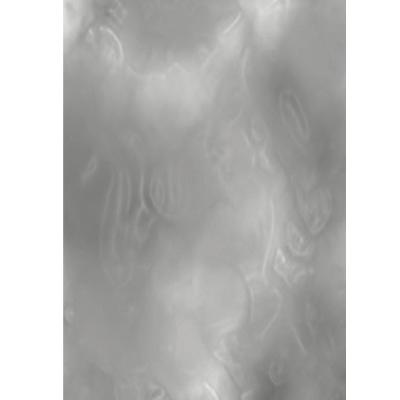 画像1: 〒 チョコレートホイル(125枚入)/シルバー<L> (1)